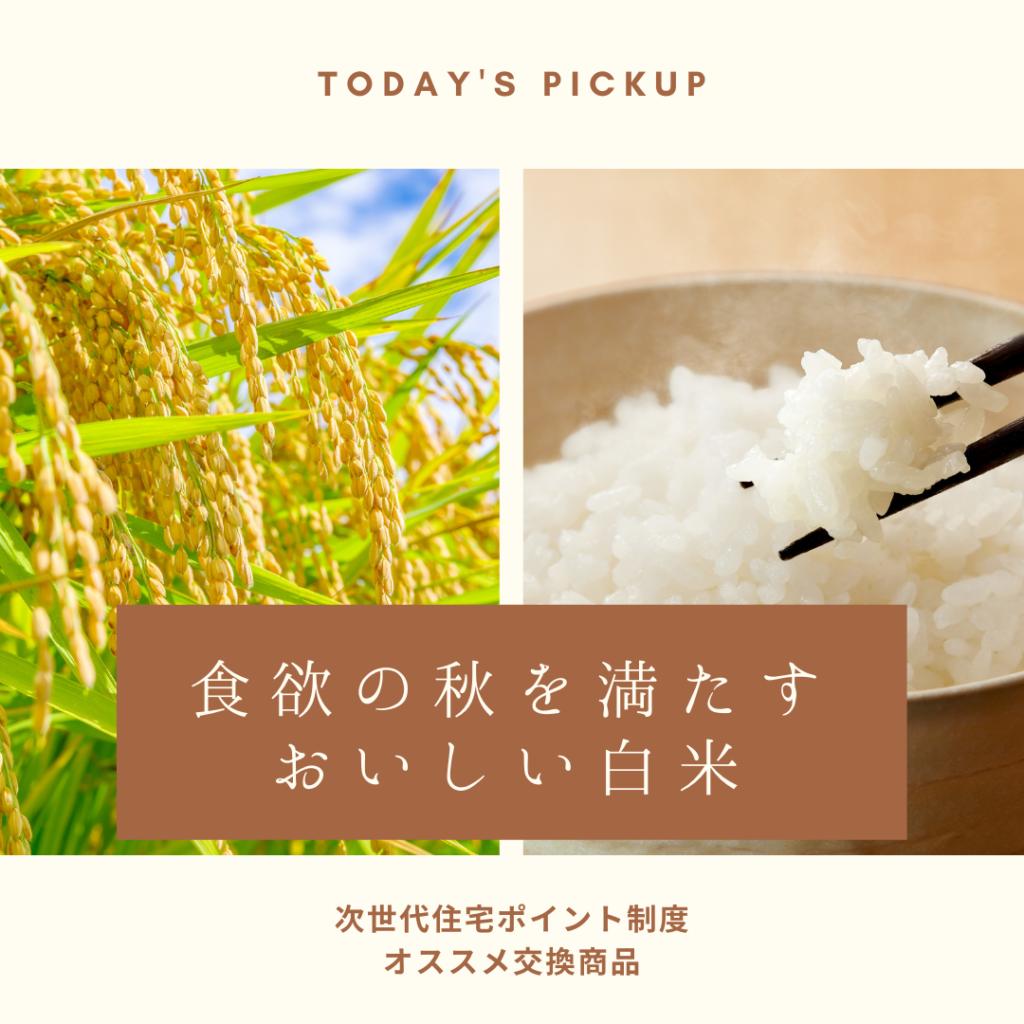 食欲の秋を満たすおいしい白米